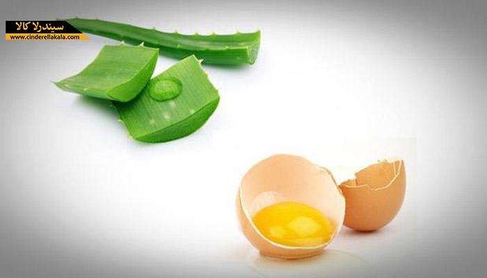 آلوئه ورا و سفید تخم مرغ برای درمان چین و چروک های پیشانی